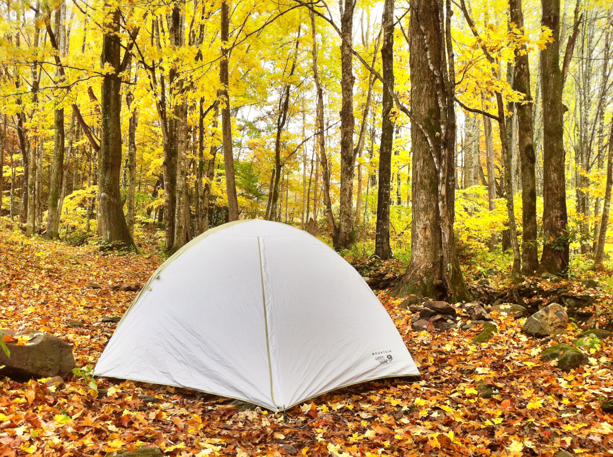 grandfather mountain tent camping